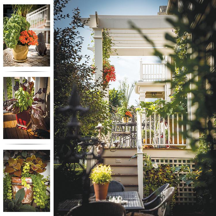 Welcome to the Neighborhood - Collage