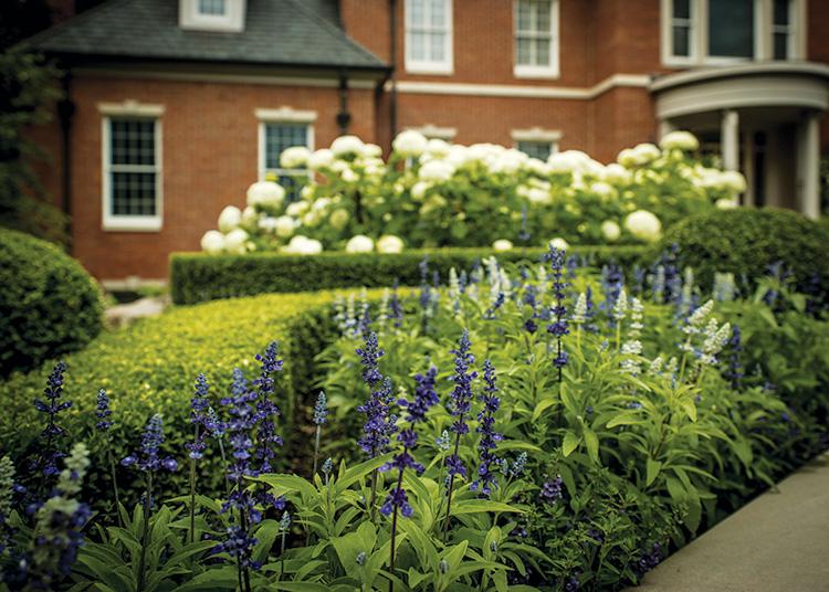 Gardens That Beckon - Plants