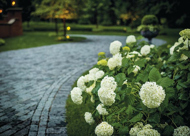 Gardens That Beckon - Driveway